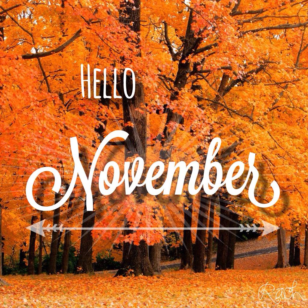 hello november jta wellness san antonio dietitians